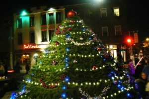 East Passyunk Avenue Tree Lighting
